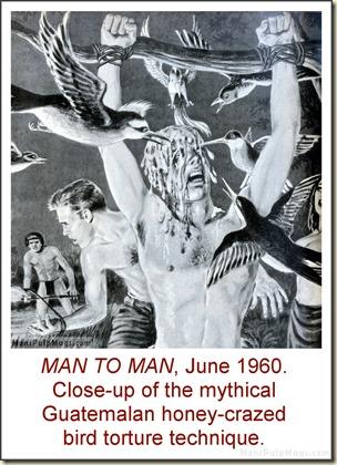 MAN TO MAN, June 1960, torture by birds & honey