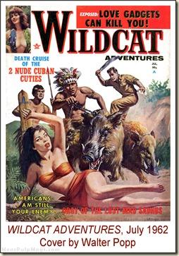 WILDCAT ADVENTURES, July 1962, Cover by Walter Popp