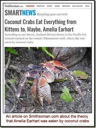Amelia Earhart eaten by coconut crabs wm
